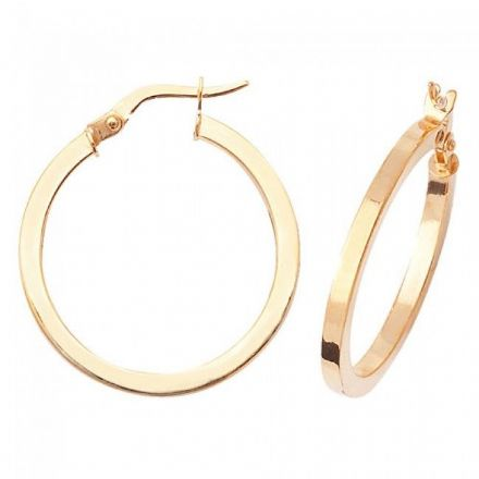 Just Gold Earrings -9Ct Earrings, ER870